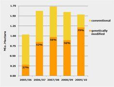 Disease-resistant bananas, drought-tolerant maize - News - gmo ...