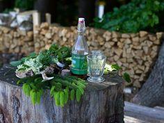 Kraut, Bottle, Plants, Home Decor, Homemade Home Decor, Flask, Plant, Interior Design, Home Interiors