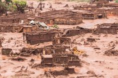 Turquim @turquim5  7 hHá 7 horas Tucanos tremem...A lama da Samarco tem dono: é da Vale! http://www.brasil247.com/pt/colunistas/alceucastilho/204642/A-lama-da-Samarco-tem-dono-%C3%A9-da-Vale.htm… @brasil247