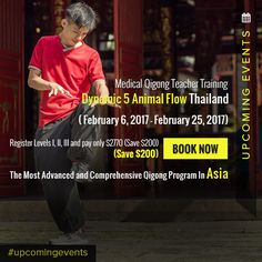 Medical Qigong, Animal Flow, Upcoming Events, Thailand, Join, Teacher, Wellness, Training, Spring