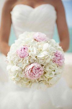 hortensia blanc, pivoine rose