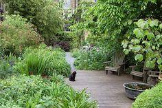 Dan Pearson's garden in Peckham, South London Farm Gardens, Small Gardens, Outdoor Gardens, Landscape Design, Garden Design, Desert Landscape, Dan Pearson, London Garden, Dream Garden