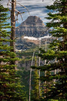 Mt. Reynolds, Glacier National Park, Montana by Dave Gaylord