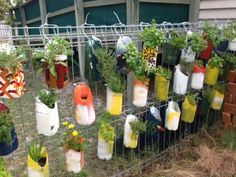 Maybe hang a grid on the side of the house and I'll paint containers and fill them with herbs?