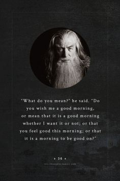 INTJ Thoughts Tumblr 36 - What do you mean? he said. Do you wish me good morning, or mean that it is a good morning whether I want it or not; or that you feel good this morning; or that is is a morning to be good on? - gandalf