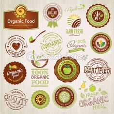 Set of organic food labels and elements — Stock Vector #16319593