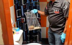 Traficarían cocaína desde Caquetá al área metropolitana de Pereira