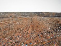 """Let the Earth Open and Salvation Bud (Aperiatur Terra et Germinet Salvatorem) (Détail) 2005-2006 Anselm Kiefer. Oil, acrylic, emulsion and shellac on canvas. Grand Palais, Paris."