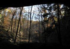 hoosier-national-forest