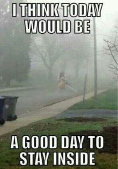 Silent hill morning fog