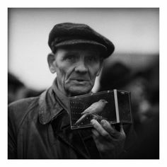 Man with a bird, photograph by Tadeusz Rolke Bird People, Portrait, Photography, Feathers, Polish, Birds, Google, Photos, Fotografia