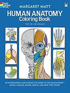 Human Anatomy Coloring Book (Dover Children's Science Books): Margaret Matt, Joe Ziemian: 0000486241386: Amazon.com: Books