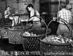 From the Vault – Page 11 – Windsor Star Essex County, Star Wars, Vaulting, Windsor, Ontario, Detroit, The Past, Stars, Classic