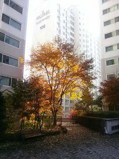 Yongin. South Korea