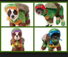 Ninja Turtle 💛