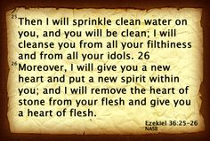 Then I will sprinkle clean water on you, and you will be clean; I will cleanse you from all your filthiness and from all your idols. Moreover, I will give you a new heart and put a new spirit within you; and I will remove the heart of stone from your flesh and give you a heart of flesh.