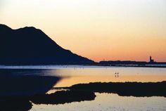 RESERVAS DE LA BIOSFERA EN ANDALUCÍA. Las salinas de Cabo de Gata además de aves marinas y limícolas posee una colonia permanente de flamencos (Copyright Comunicación y Turismo) Os invitamos a visitar: http://revista.destinosur.com/pdf57/biosfera.pdf http://turismohumano.com/ www.marcaparquenatural.com