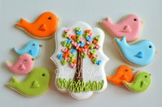 Lizy B: Birthday Birdies and Owl Cookies!