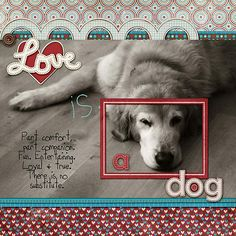 love is a dog - Scrapbook.com This is a really creative LO.... I don't like to copy people but, I want to use this as a guide for my memorial LO of my Elliott Ness, my Shepherd I lost a month & 1/2 ago. This would be just perfect. I love this page!