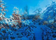 Anara Abzhanova: Favorite Winter