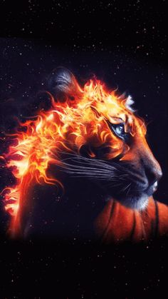 Tiger Head On Fire Black Background Animal Fantasy HD wallpaper for free Wallpaper 1920x1200, Best Wallpaper Hd, Tiger Wallpaper, Wallpaper Backgrounds, Wallpaper Pictures, Mobile Wallpaper, Tiger Illustration, Fantasy Creatures, Mythical Creatures