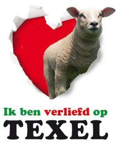 Texel <3 Beautiful Nature Scenes, Red Light District, Logos, Night Life, Netherlands, Sheep, Dinosaur Stuffed Animal, Island, Animals