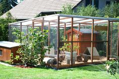 Amazing set up for a chicken coop