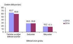 Türkiye İstatistik Kurumu, Bitkisel Üretim İstatistikleri, 2014