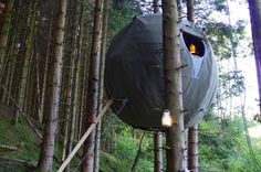 How Awesome Are These Tree Tents???
