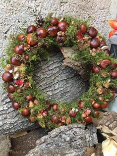 kranzYou can find Herbst tischdekorationen and more on our website. Classy Christmas, Christmas Diy, Christmas Wreaths, Christmas Decorations, Holiday Decor, Halloween Rustique, Rustic Halloween, Acorn Crafts, Lavender Wreath