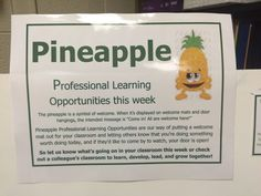 Pineapple Professional Learning at DGS