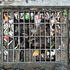 .@jusehyun | #trash #쓰레기 needs #cleaning | Webstagram