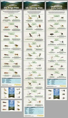 We made three great fly fishing match the hatch charts! Head over to the Fishtec blog to see all of them in detail! Upwing Mayflies- http://blog.fishtec.co.uk/upwing-river-flies-infographic Sedge & caddis- http://blog.fishtec.co.uk/sedge-caddis-river-flies-infographic Terrestrials insects http://blog.fishtec.co.uk/terrestrial-river-flies-infographic