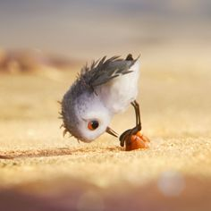 piper pixar - AT&T Yahoo Image Search Results Anime Animals, Animals And Pets, Baby Animals, Cute Animals, Piper Pixar, Walt Disney Animation, Animation Film, Cute Cartoon Wallpapers, Animal Sketches