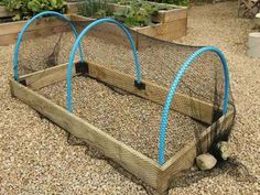 How To Make Crop Protection Tunnels For Raised Beds, Category diy garden ideas images fairy garden images garden art images garden ideas images garden images hanging garden images raised garden bed images building images diy garden decorations Veg Garden, Vegetable Garden Design, Garden Planters, Vegetable Gardening, Veggie Gardens, Summer Garden, Garden Art, Raised Planter, Raised Garden Beds