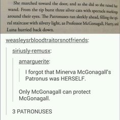 Just 21 Perfect Tumblr Posts About The Badass Women ofHarry Potter