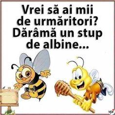 Pikachu, Funny Memes, Humor, Comics, Happy, Fictional Characters, Cheesecake, Internet, Beekeeping