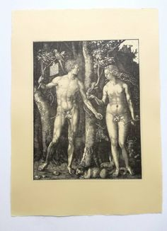Vintage engraving, copy of Albrecht Durer's The Fall of Man (Adam and Eve), etching on handmade paper, intaglio, top art retro print collect - Gerrie Johnston The Falling Man, Albrecht Durer, Italian Renaissance, Baby Owls, Paper Dimensions, Printmaking, Retro Print, Collect Art, Vintage