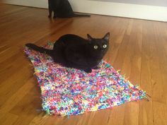 Crochetbug - Oh, what a tangled web we weave! Scrap Yarn Crochet, Crochet Mat, Rick James, Cat Mat, Cat Sweaters, Black Cats, Tangled, Crochet Projects, Weaving