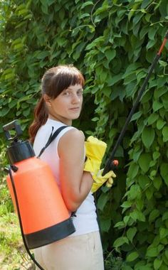 Fiches de jardinage bio: les parasites et traitements.