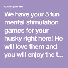 We have your 5 fun mental stimulation games for your husky right here! He will love them and you will enjoy the training time! Check them out here.