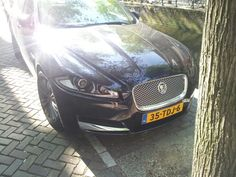 Groep 1 Jaguar