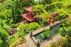 Kuvahaun tulos haulle monte palace tropical garden