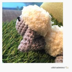 A morning greeting from this cute little lamb!  . First time doing amigurumi and result came out just nice! Hope to do more small animals amigurumi in the future  . . #handmadebystellal #ilovecrochet #crochet #craft #crochetaddict #icrochetanimal #crochetamigurumi #amigurumi #igers #igcraft #igdaily #igcrochet #igcrochetlovers #malaysiacrafter by stellalim16