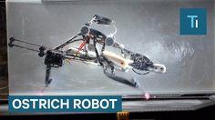 This ostrich robot can run 12 mph