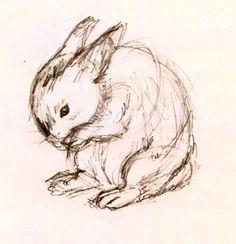 Rabbit Sketch by ~Emmary on deviantART
