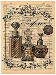 Perfume Bottles vintage drawing . Mother's Day by BookwormSalon
