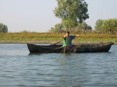 Danube delta, Sulina arm