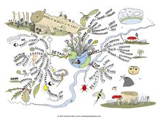 Beauty of the planet mind map...this website also has tons of mind maps to look at
