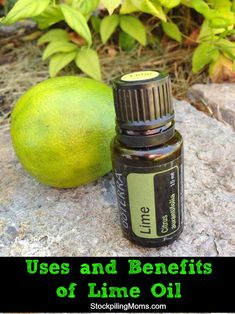 Uses and Benefits of Lime Essential Oil Essential Oil Carrier Oils, Lime Essential Oil, Essential Oil Blends, Doterra Essential Oils, Young Living Essential Oils, Natural Healing, Natural Oils, Lime Uses, Limpieza Natural